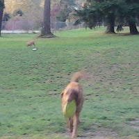 Photo taken at French Lake Off-Leash Dog Park by Leona P. on 11/11/2012