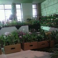 Photo taken at Casa De Cultura by Dionne G. on 7/14/2012