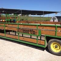 Photo taken at Eckert's Belleville Country Store & Farm by Brendan T. on 9/19/2012