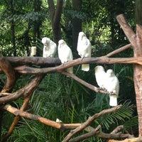 Photo taken at Xiang Jiang Safari Park, Guangzhou by Aad H. on 9/22/2013