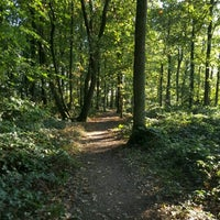 Photo taken at Vormerse Bos by Arjan on 10/16/2016