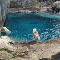 Photo taken at Zoo sauvage de Saint-Félicien by Morgane S. on 5/21/2016