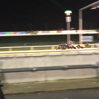 Photo taken at Limerick Greyhound Stadium by Alexa M. on 3/26/2016