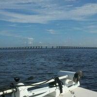 Photo taken at Henry Holland Buckman Bridge by Tamara S. on 10/6/2012