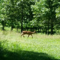Photo taken at Guilford Courthouse National Military Park by Elmer G. on 6/10/2016