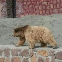 Photo taken at Barajin Zoo | باغ وحش باراجين by Mahdi H. on 5/10/2016
