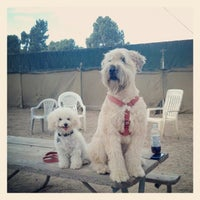 Photo taken at Recreation Park Dog Park by LB Chica on 8/16/2012