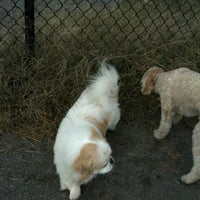 Photo taken at Baron Cameron Dog Park by Nancy H. on 10/20/2012