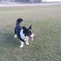 Photo taken at West Dog Park by Hind S. on 1/20/2014