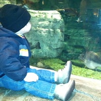 Photo taken at Bass Pro Shops by December B. on 3/16/2013