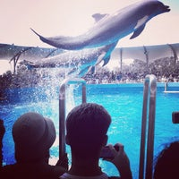 Photo taken at Miami Seaquarium by Ángel on 9/3/2012