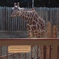 Photo taken at Sacramento Zoo by 🌺Isabel G. on 10/15/2011