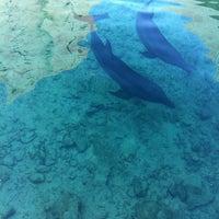 Photo taken at Dreams Cancun Resort & Spa by Jose Q. on 9/20/2011