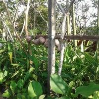 Photo taken at Anjung Rimbun Nursery by chafirdawz on 4/11/2012