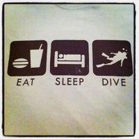 Spice Dive