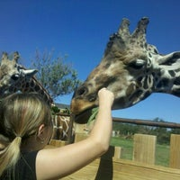 Photo taken at The Oklahoma City Zoo by Amanda N. on 9/5/2011