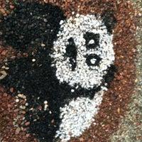Photo taken at Panda Express by Mark M. on 5/15/2012