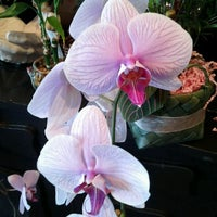 Photo taken at The Family Flower Shoppe by Sara S. on 1/30/2012