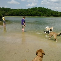Photo taken at James Island County Park Dog Park by Kathy A. on 8/18/2012