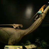 Photo taken at Museum of the Rockies by Miranda Y. on 7/20/2012