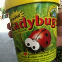 Photo taken at Nicks Garden Center & Farm Market by Msi Da'vid .. on 7/2/2012