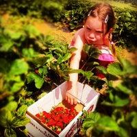 Photo taken at Indian Creek Farm by Daniel L. on 6/24/2012