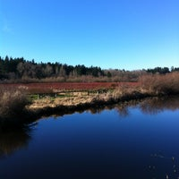 Photo taken at Mercer Slough North Bridge by Allison C. on 2/4/2012