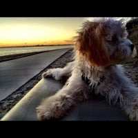 Photo taken at Mission Bay Park by gary m. on 11/6/2011