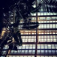 Photo taken at Palmenhaus by Yvonne Z. on 6/29/2012