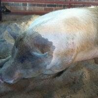 Photo taken at Swine Barn by Larry R. on 8/11/2011