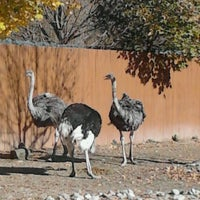 Photo taken at Lehigh Valley Zoo by Katrina R. on 11/5/2011