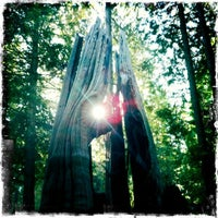 Photo taken at Stanley Park by Erin S. on 10/15/2011