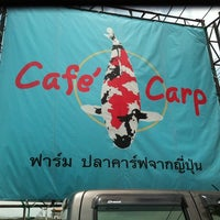 Photo taken at Cafe Carp Coffee & Pub & Restaurant by (‵▽′)ψⓇⓊⓈⒽνεε🚲 on 5/30/2012