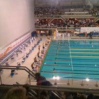 Pieter Van Den Hoogenband Zwemstadion Stratum