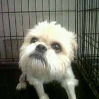 Photo taken at Groomingdales Pet Spa by angie s. on 9/23/2011