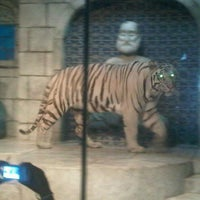 Photo taken at Tiger's Den by Vicki N. on 6/3/2012