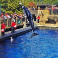Photo taken at Vancouver Aquarium by Dusty G. on 4/5/2012