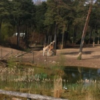 Photo taken at Burgers' Zoo by Chiel t. on 4/21/2012