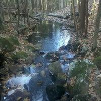 Photo taken at Hawthorne Forest by Matt R. on 11/19/2011
