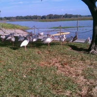 Photo taken at Kissimmee Lakefront Park by Dusty W. on 12/21/2011