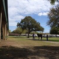 Photo taken at Ocala Breeders Sale by Raymond B. on 3/12/2012