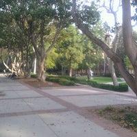 Photo taken at UCLA Franklin D. Murphy Sculpture Garden by Chris G. on 1/31/2012
