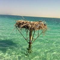 Photo taken at Al Dabiya Beach by M A. on 1/26/2012
