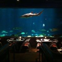 Photo taken at Sharks Underwater Grill by Mike D. on 10/4/2011