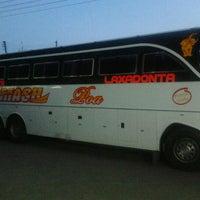 Photo taken at Laxodonta- Malindi by Ariba B. on 9/16/2011