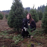 Photo taken at McMurtrey's Red-Wood Christmas Tree Farm by Mike M. on 12/4/2011