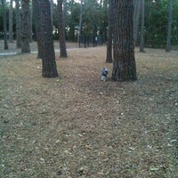 Photo taken at Tamarac Dog Park by Gin, Saydie & Marx J. on 6/2/2011