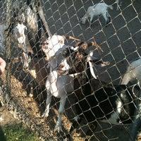 Photo taken at CJ Goat Farm by Kim 💀🎀 on 8/6/2011