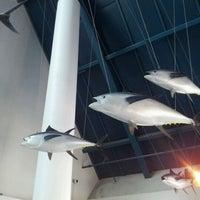 Photo taken at Moody Gardens Aquarium Pyramid by Barton J. on 4/12/2012