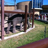 Photo taken at Calgary Zoo by Lisa M. on 8/26/2012